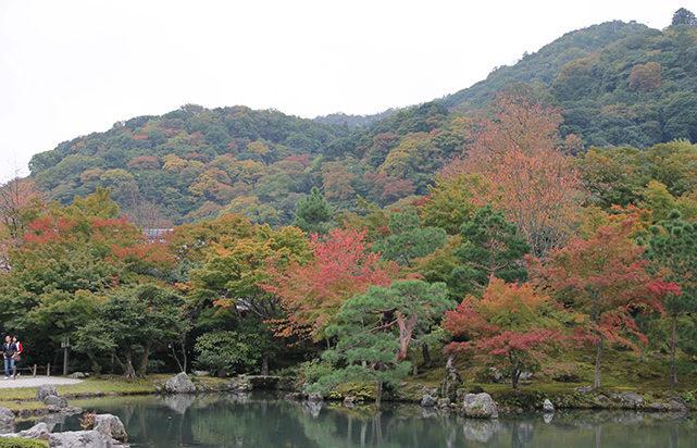 Jardines del templo Tenryu-ji